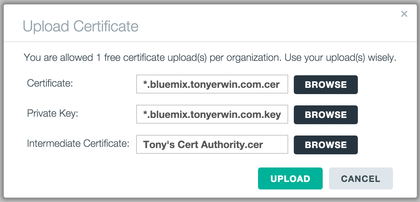 Bluemix UI: Upload Certificate Dialog (Populated)