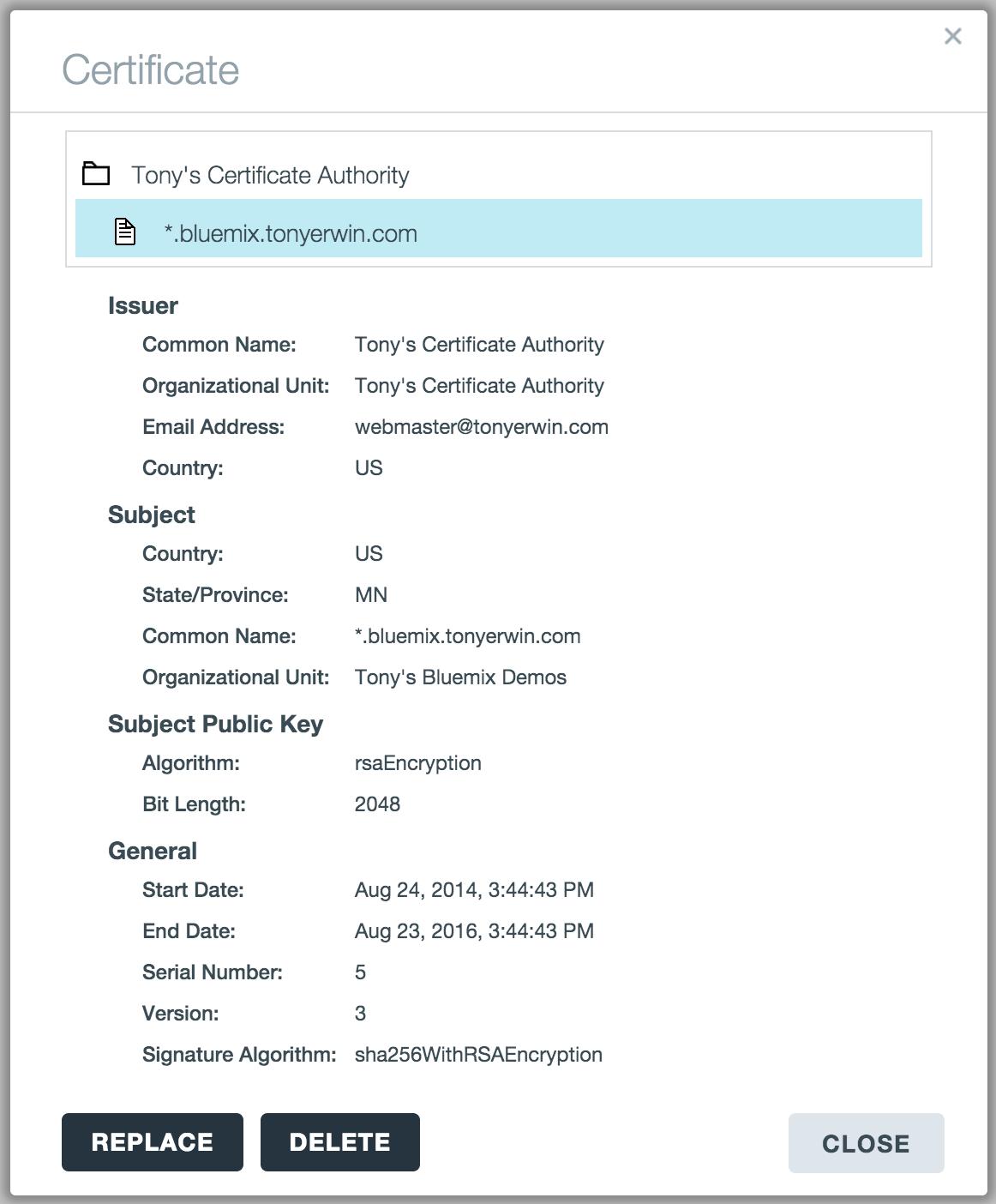 Bluemix ui ssl certificates and custom domains tony erwins bluemix ui view certificate xflitez Choice Image