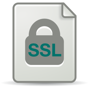 Bluemix UI: SSL Certificates for Custom Domains