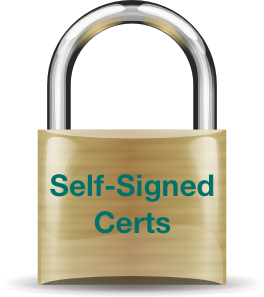 """Generating Self-Signed SSL Certificates for Use with Bluemix Custom Domains"